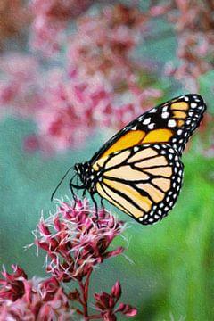 Bewerkte foto van een vlinder op een bloem von W J Kok