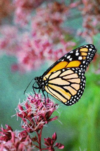 Bewerkte foto van een vlinder op een bloem van