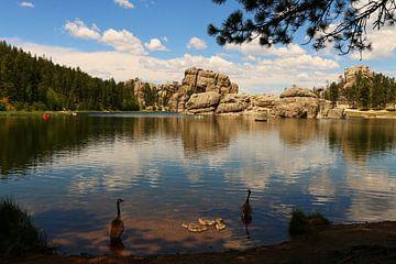 Zomerdag bij Sylvian Lake North Dakota van Christiane Schulze