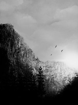 Berge schwarz/weiß von DominixArt