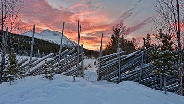 Norwegen, Sonnenaufgag van Michael Schreier