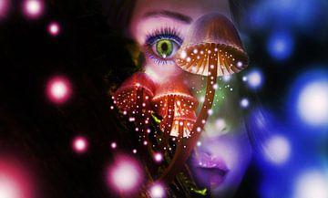 Fairy Delight sur Erwin Visscher