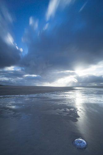 Maasvlakte 13