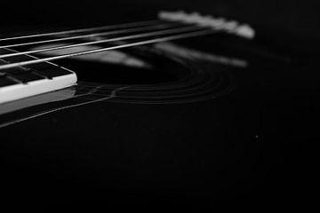 Richwood gitaar van Quint Wijnhoven