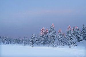 Winter Zweden