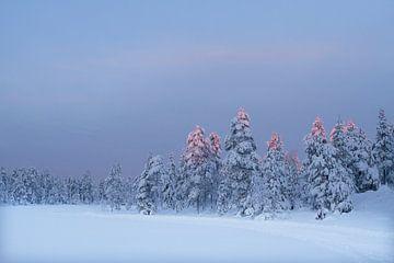 Winterlandscape in Sweden sur
