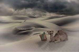 In der Wüste