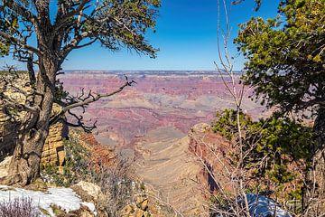 Grand Canyon im Schnee. von Patrick Vercauteren