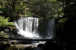 Russel watervallen in Tasmanië van Arne Hendriks