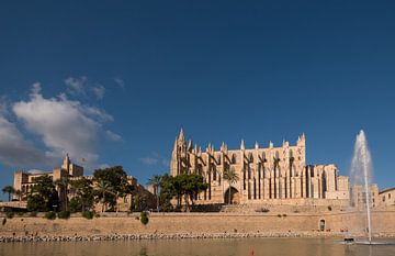View Cathedral Palma de Mallorca van Maaikel de Haas