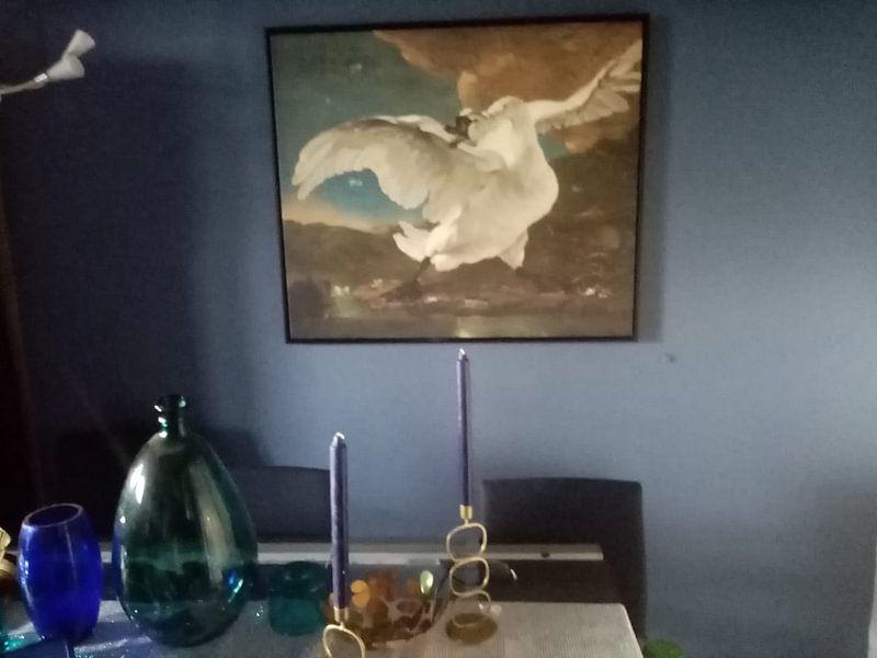 Klantfoto: De bedreigde zwaan, Jan Asselijn
