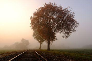 Reise durch den Herbst von Danny Van Silfhout