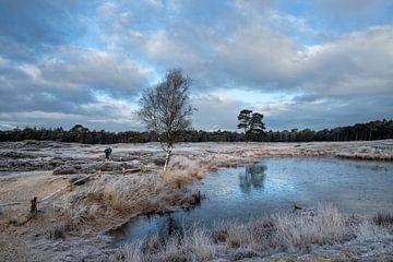 Winter op landgoed Heidestein Bornia in Driebergen Zeist van Peter Haastrecht, van