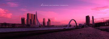 Life Rotterdam van Nicole Erens