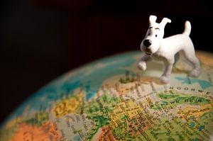 Reise um die Welt von Ooks Doggenaar