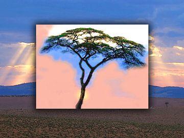 Serengeti von Dirk H. Wendt