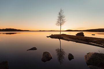 Midsummer Sweden von Claire Droppert