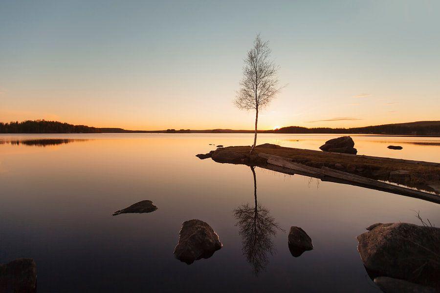 Midsummer Sweden van Claire Droppert