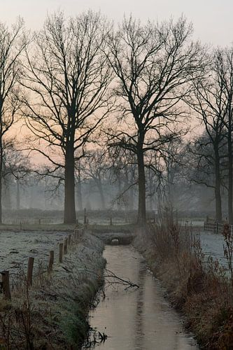 Tweeling in de ochtend van Jaap Kloppenburg