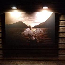 Kundenfoto: Queen of the lake von Peggy Saffrie, auf leinwand