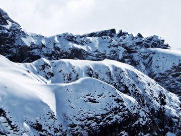 The magic of snow... (7) van Christoph Van Daele