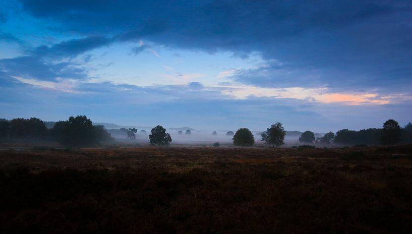 'Misty Mornings' van Jurjen Rozeboom