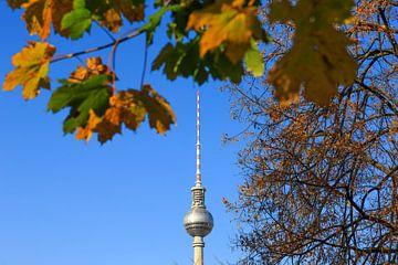 Fernsehturm Berlin im Herbst von Frank Herrmann