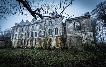 Villa abandonnée avec des arbres sur Inge van den Brande