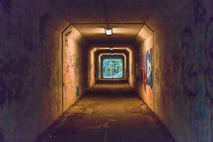Tunnelblick van