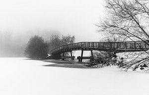Kleine brug over het meer van Werner Reins