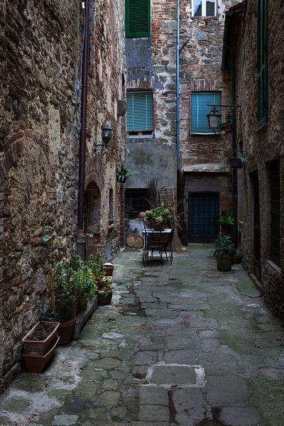 Het leven in Toscane van Steven Dijkshoorn