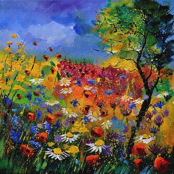 Sommerblumen von pol ledent