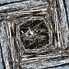 structure in driftwood (004w) van Jeroen van der Meij thumbnail