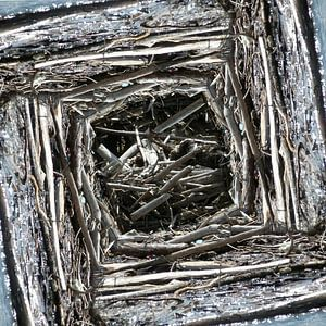 structure in driftwood (004w)