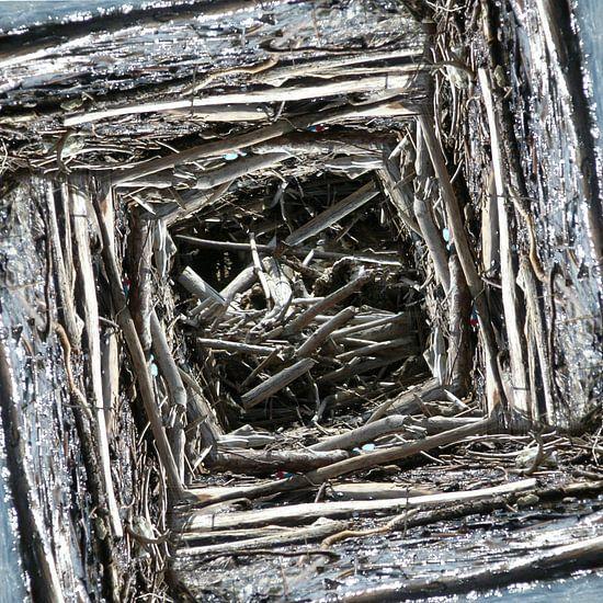 structure in driftwood (004w) van Jeroen van der Meij