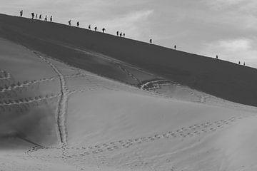 De weg naar niemandsland van Jeroen Zelle