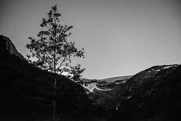 Gletjser in Noorwegen van Ellis Peeters