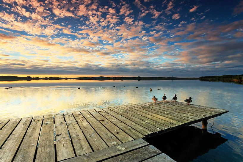 Steg mit Enten im Sonnenuntergang von Frank Herrmann