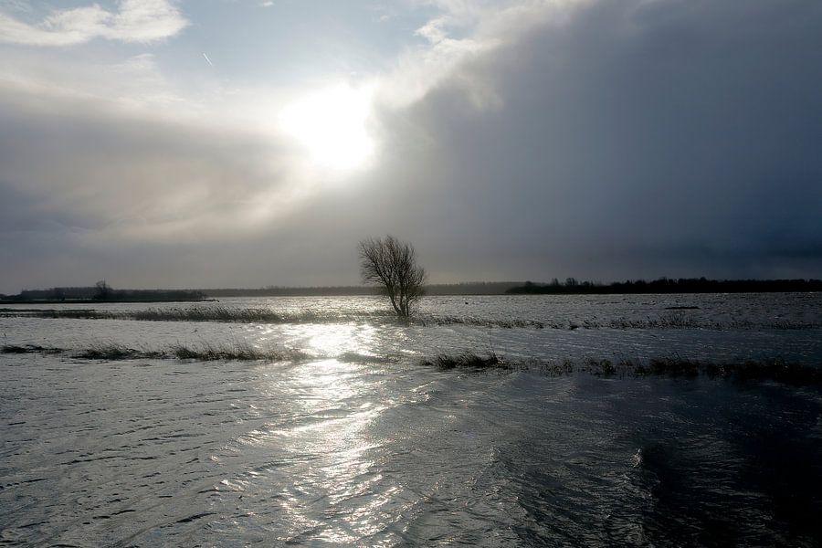 Landschap Groningen: Hoog water Lauwersmeer I