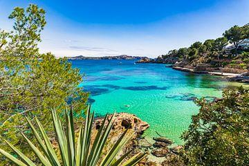 Mooie baai strand van Cala Fornells, Mallorca eiland Spanje van Alex Winter