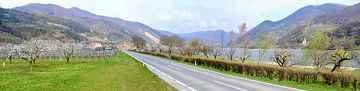Wachau in het voorjaar van Leopold Brix
