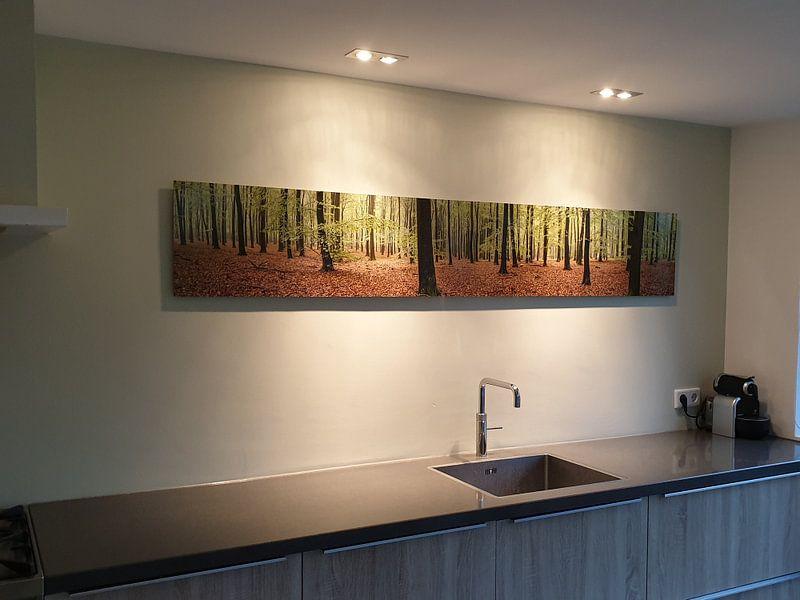 Kundenfoto: Bos panorama von Sjoerd van der Wal, auf alu-dibond