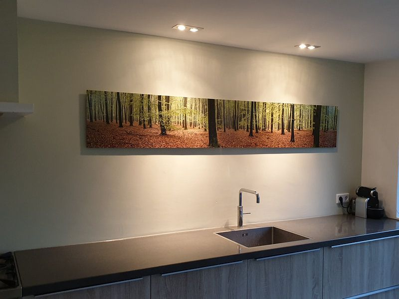 Klantfoto: Bos panorama van Sjoerd van der Wal, op aluminium