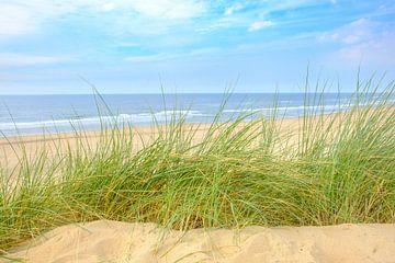 Vue depuis les dunes sur la plage de sable de la côte de la mer du Nord  sur Sjoerd van der Wal
