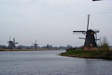 Molens bij Kinderdijk langs het water van R Verhoef