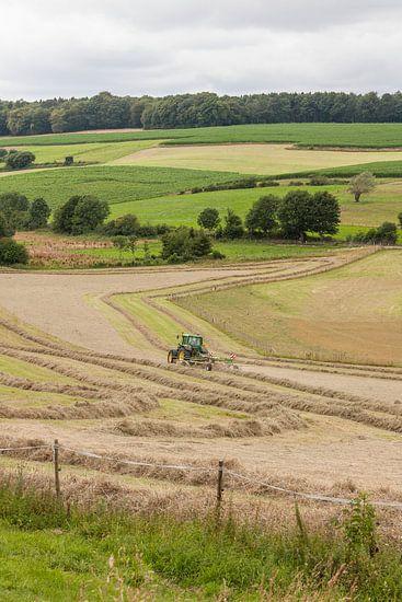 Hooi verwerken op de Limburgse heuvels