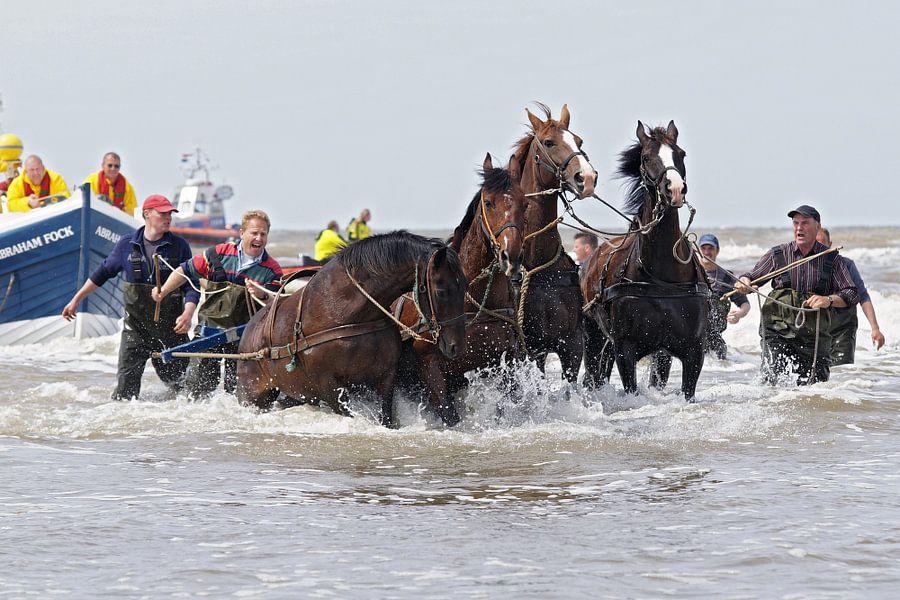 reddingsboot met paarden van ameland van Dirk van Egmond