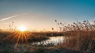 Sonnenuntergang in den Rieselfeldern von Steffen Peters