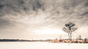 Winter in de Overasseltse en Hatertse Vennen.
