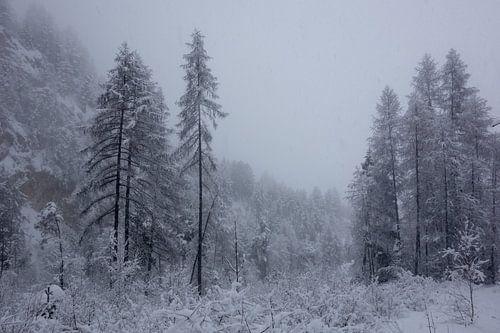 Sprookjesachtig winterwonderland van